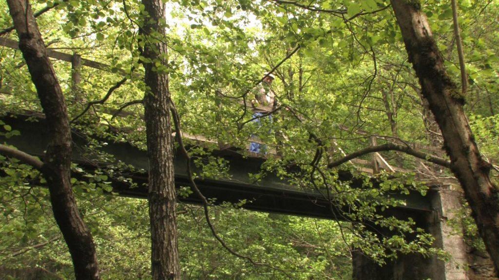 puente3_Web