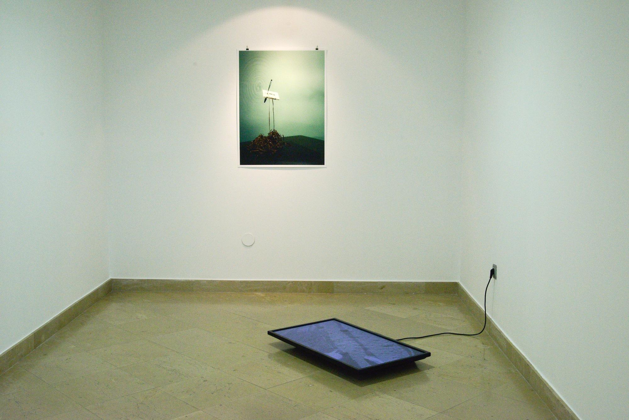 "Wall: Alejandro Almanza Pereda, Auto Reverse. Floor: Carolina Saquel, ""untitled (rushes Antonio / Ardia 2014). Museo Centro de Arte Pepe Espaliu, Cordoba, Spain"